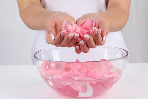 Preparación Agua de Rosas
