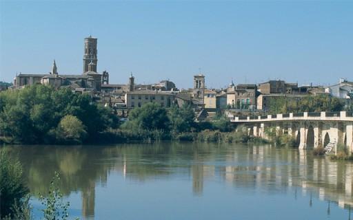 como es el agua en Tudela-Eurofontanilla