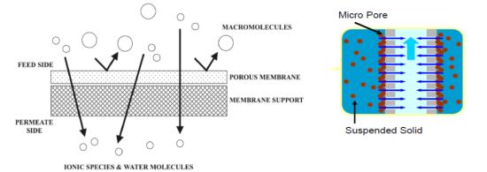 La microfiltración